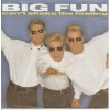 pop/big fun - cant shake the feeling