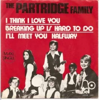 pop/partridge family the - i think i love you